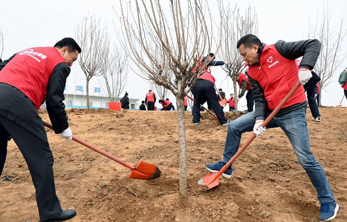 山东:百人共植树,景观河畔添新绿