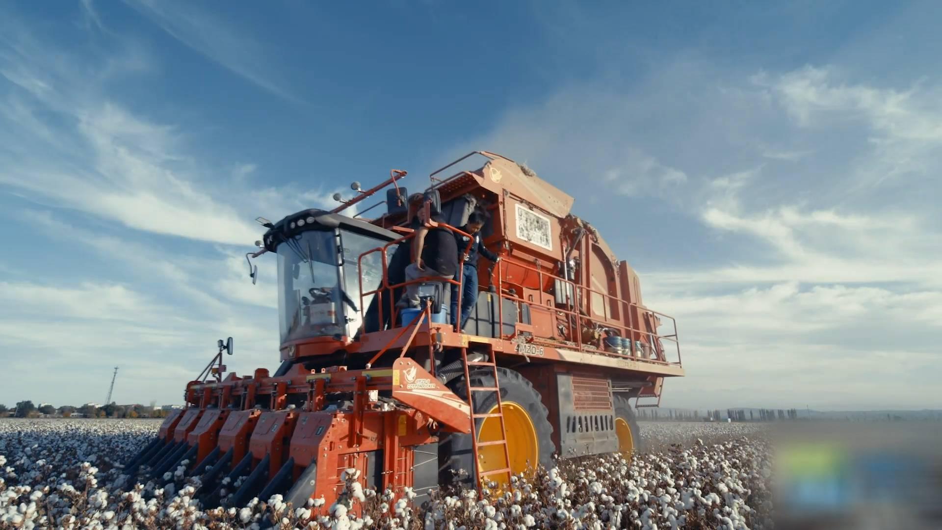 """74秒 棉花何须""""强迫劳动""""?!山东一企业在新疆机械化作业 加工量约占全国棉花总产量1/6"""