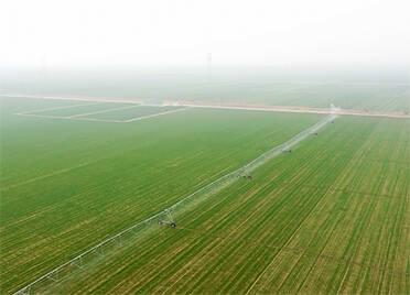 德州13个乡镇保护耕地成绩突出受到省级表彰