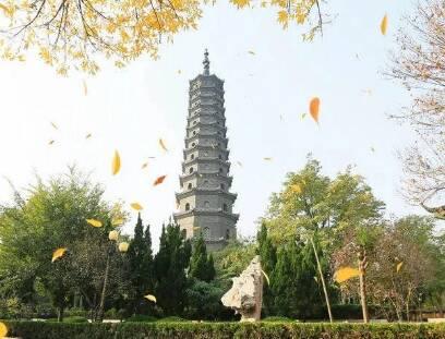 滨州无棣县大觉寺景区4月7日起有序恢复开放