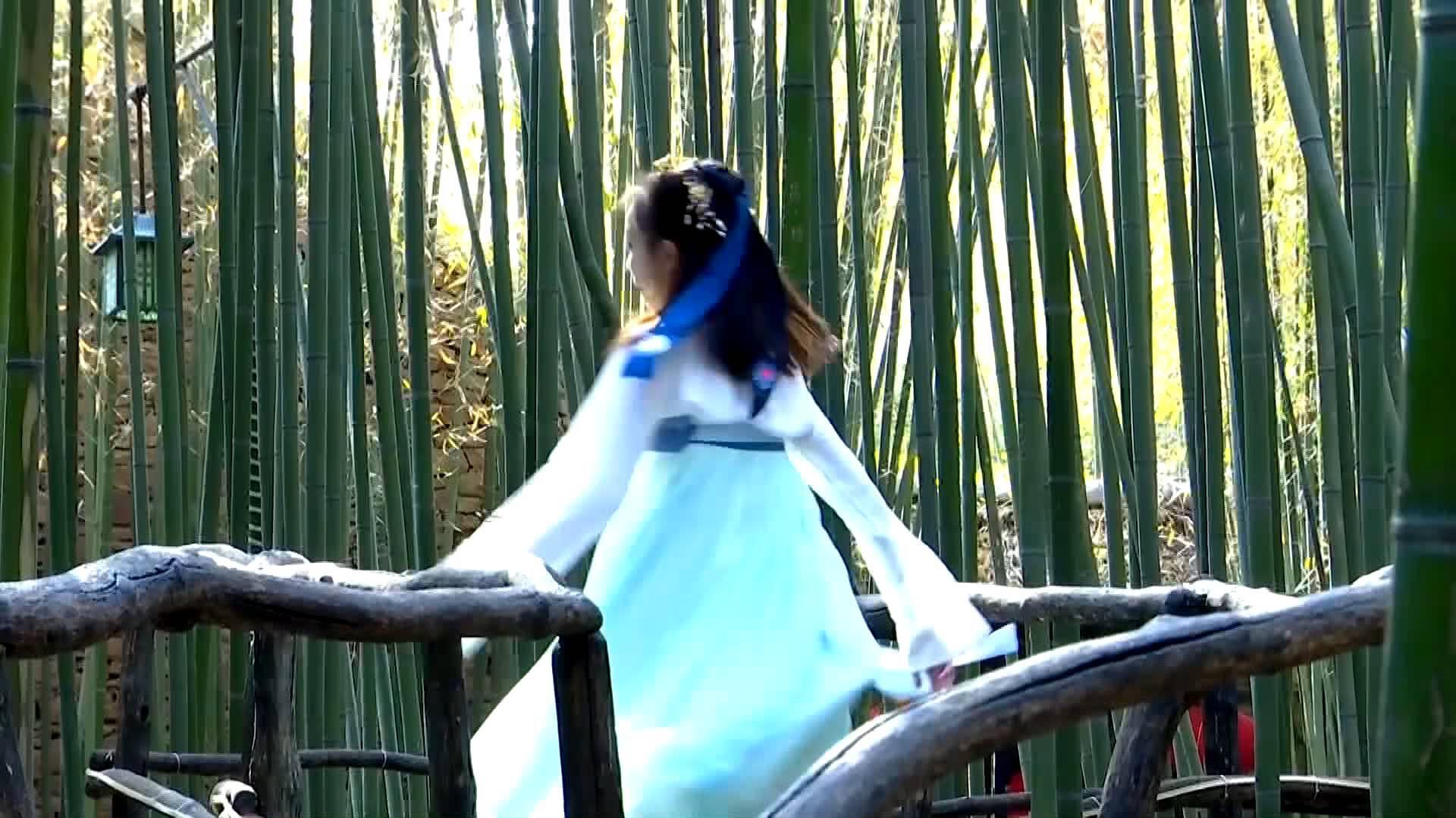 "Vlog | 家家泉水户户竹阴 在临沂遇见""北方小江南"""