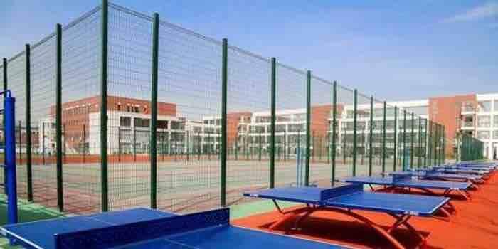 淄博市355所学校体育场地设施将向社会开放