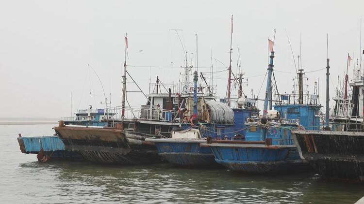 50秒│潍坊昌邑:伏季休渔在即渔船有序靠岸入港