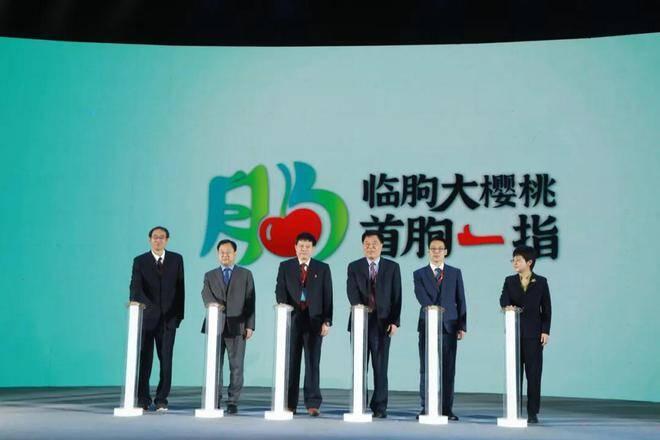 临朐县发布国内首个高标准大樱桃区域公用品牌