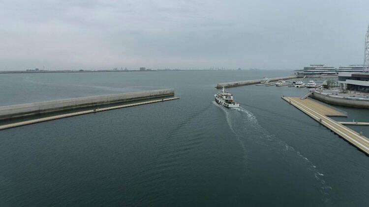 81秒|潍坊5月起进入伏季休渔 多部门联合执法保护海洋生态