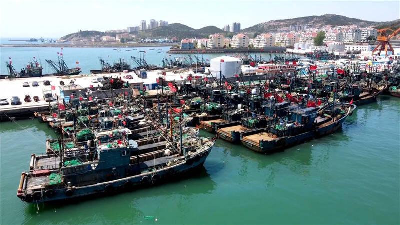 74秒 最后一船渔获上岸 黄渤海2021年伏季休渔开启