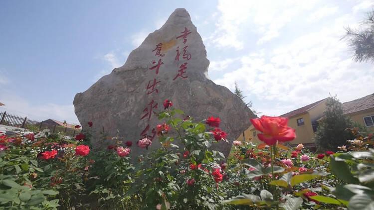 破茧成蝶 看潍坊临朐县牛山西头村的美丽蝶变