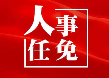 山东省政府发布一批人事任免:涉省政府办公厅、省人防办等单位部门