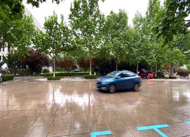 视频丨山东多地迎来新一轮降雨 菏泽鄄城降大雨,农作物注意防风防雹