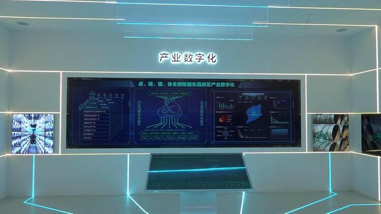 聊城重点项目现场观摩 东昌府区:早谋划早布局早出手 数字经济加速崛起