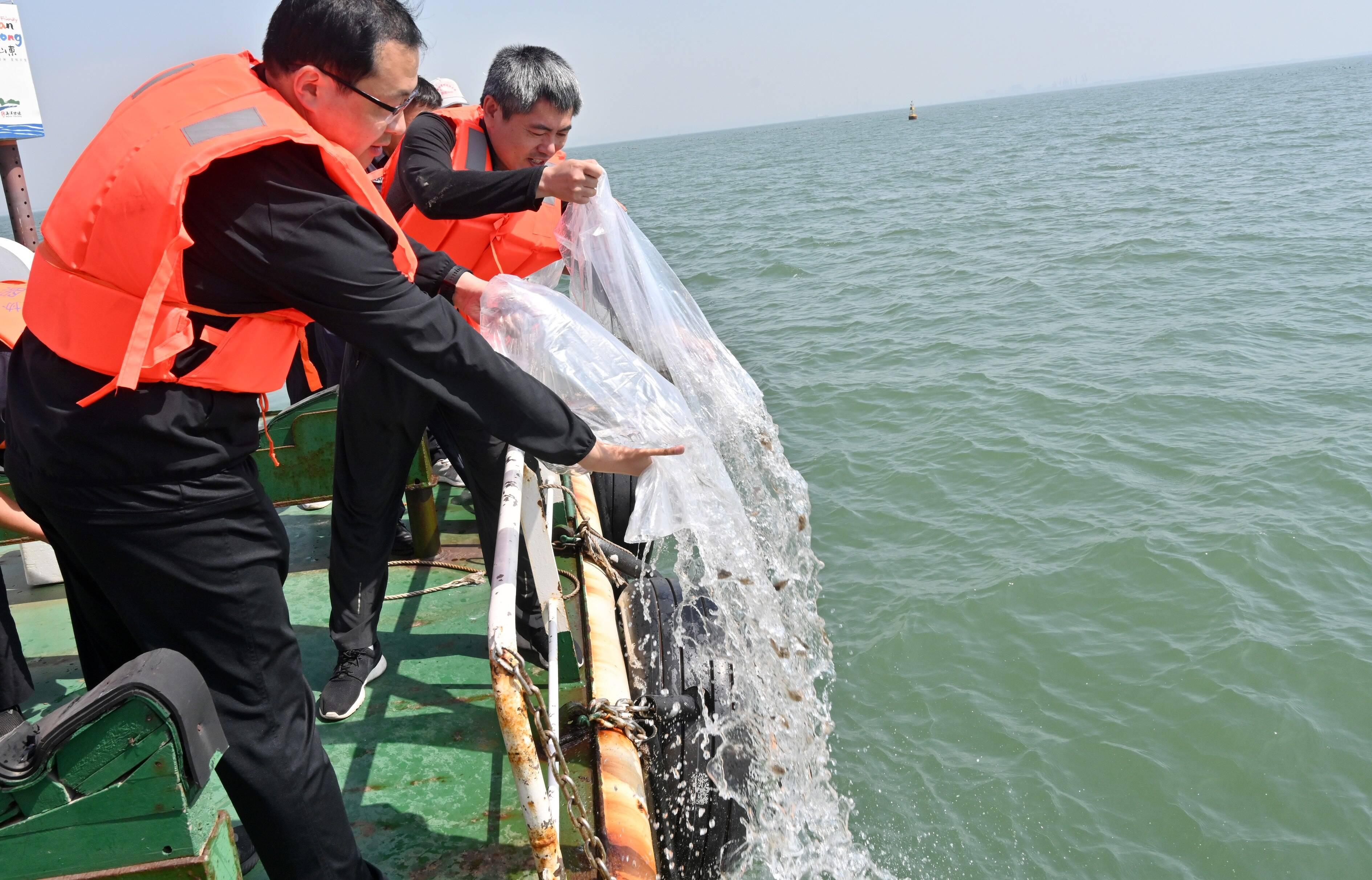 日照开展海洋增殖放流 保护海洋生物多样性