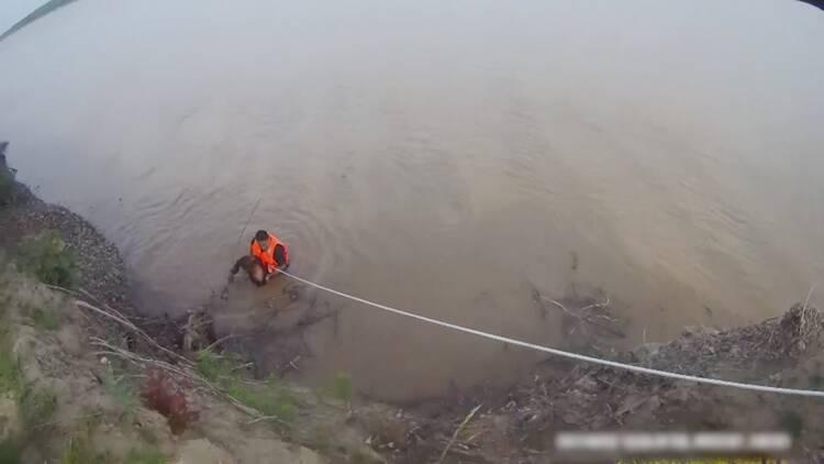 为他们点赞!男子酒后失足跌入黄河 聊城警民合力生死救援
