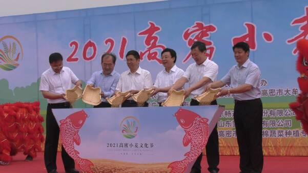 2021潍坊高密小麦文化节开幕 全面展示小麦产业魅力