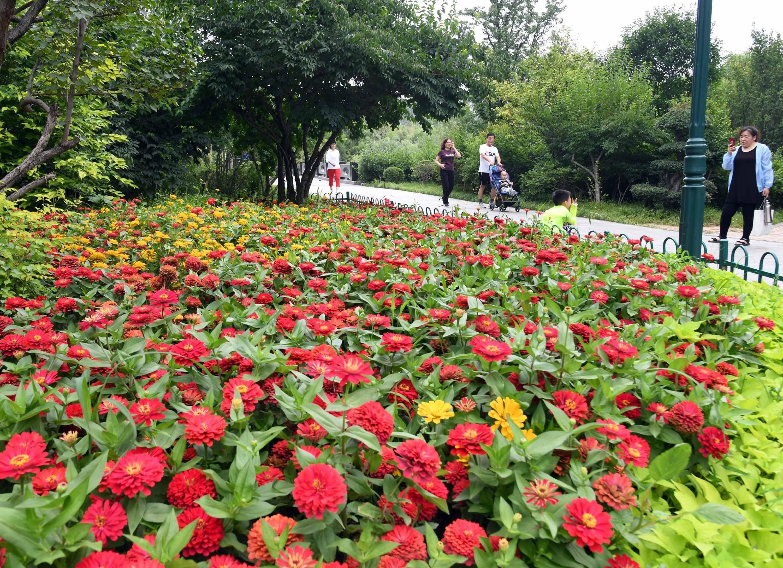 山东潍坊:公园走一走 亲近大自然
