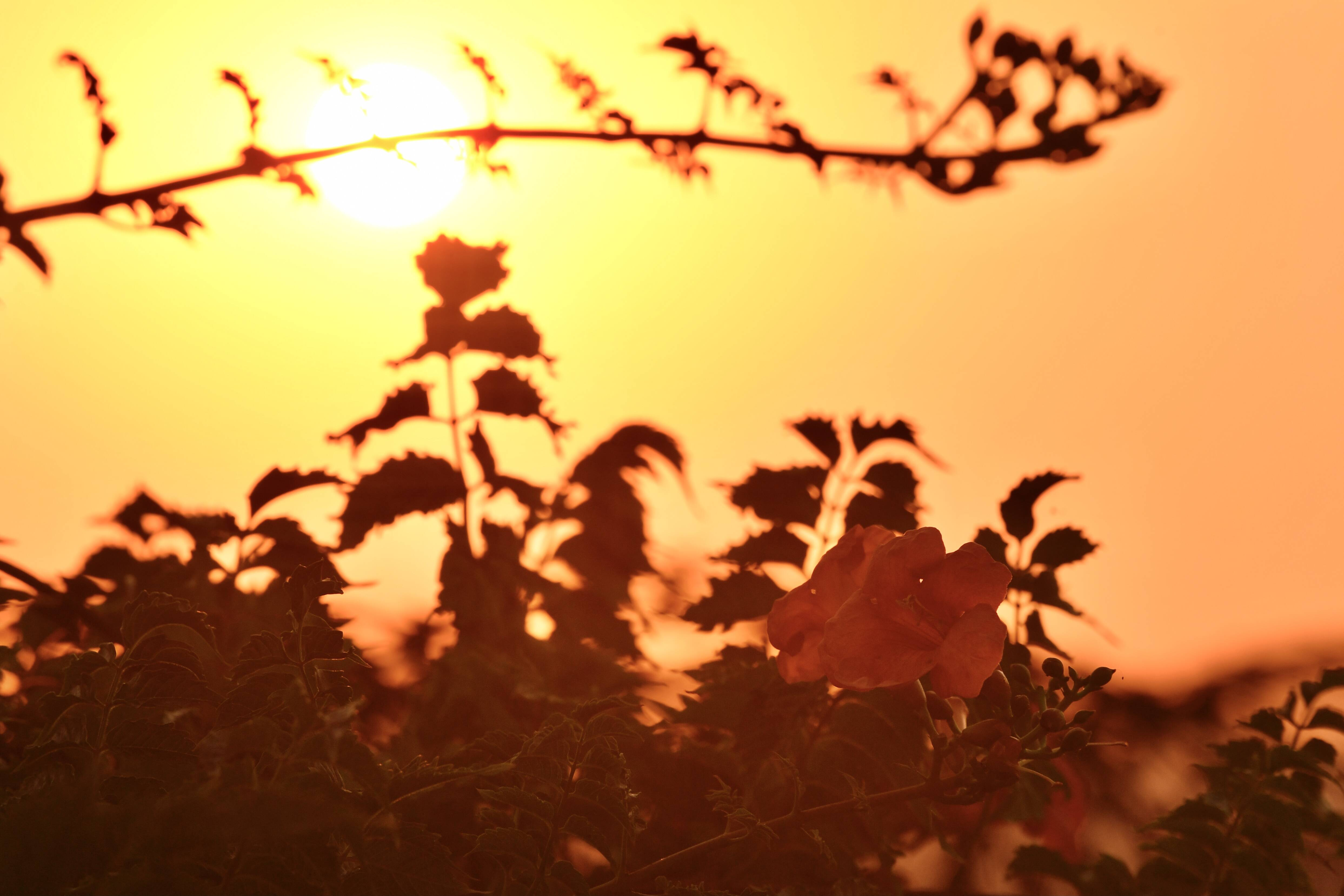 影像力|泉城济南邂逅浪漫黄昏!这样绝美的天空大秀你见过吗?