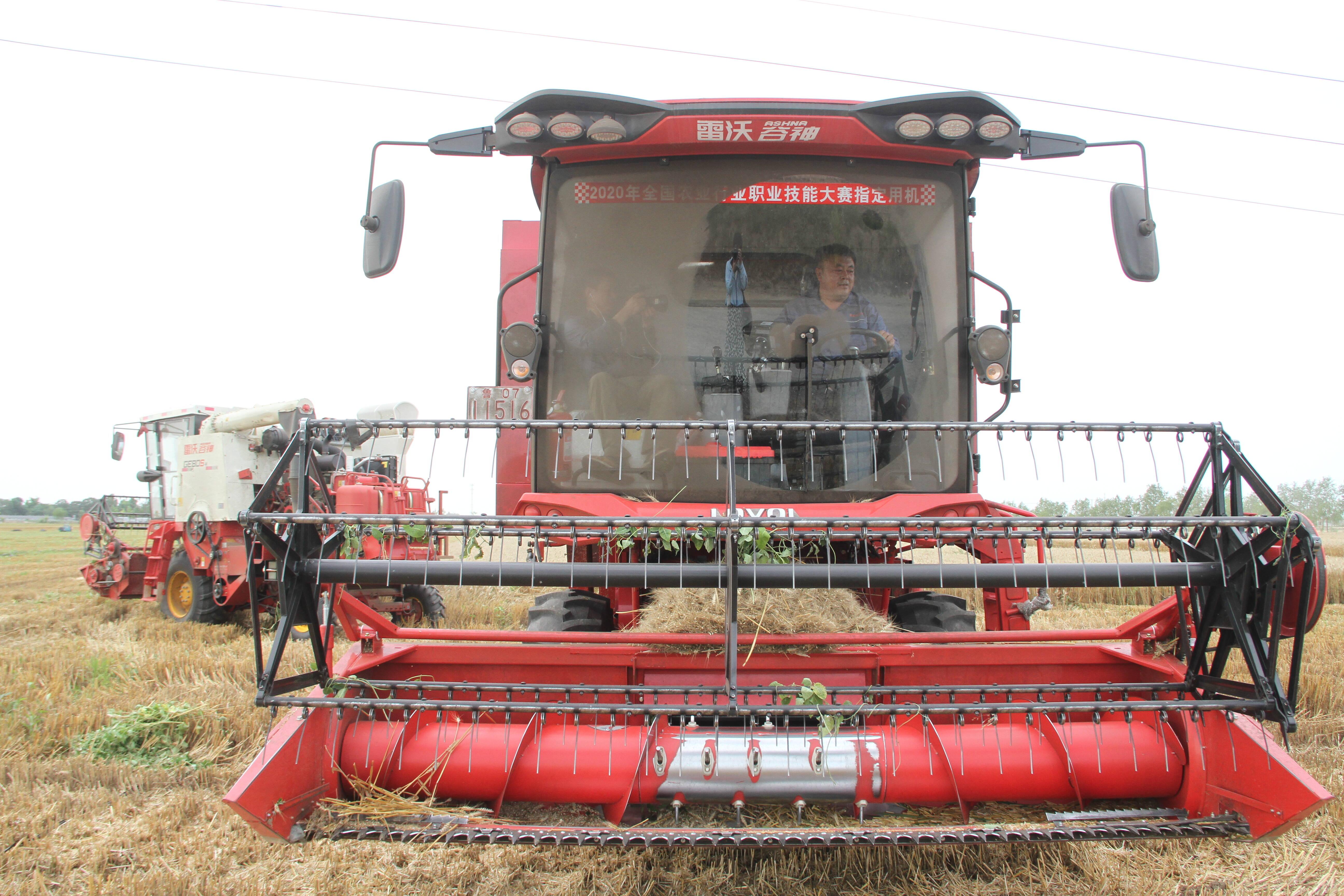 潍坊惠民农作物种植合作社6535亩济麦44喜获丰收