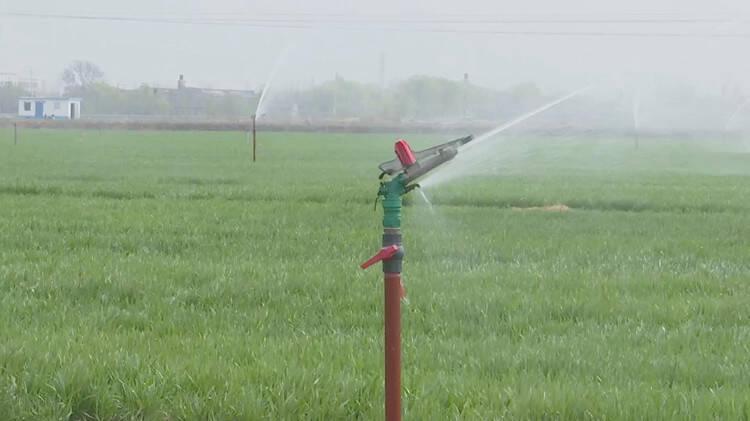 潍坊昌邑:强化水利保障 为农业高质量发展注入强劲动力