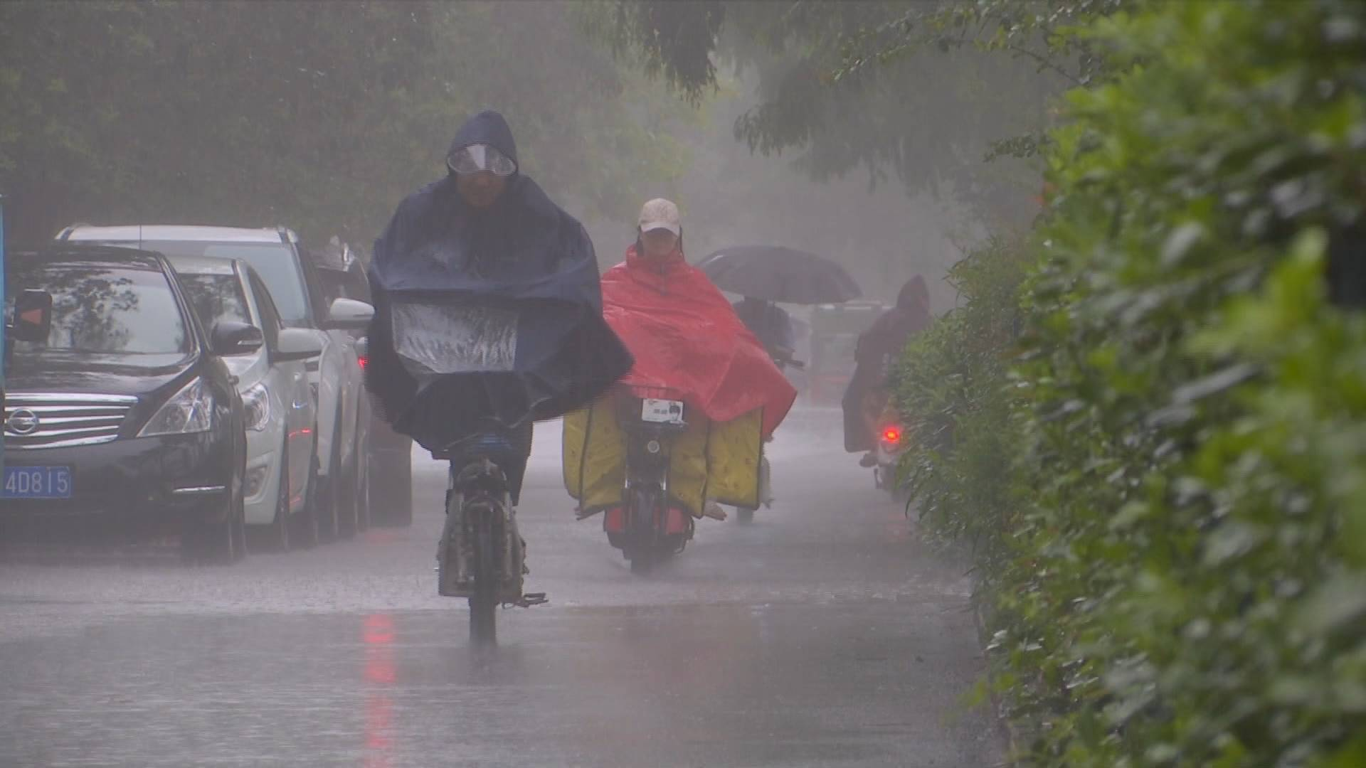 小暑至,枣庄台儿庄降下倾盆大雨!山东这些地方多雷阵雨+9级大风