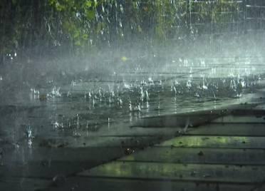 最大降水量128.1毫米!德州出现强降水天气 部分积水路段已没过脚踝