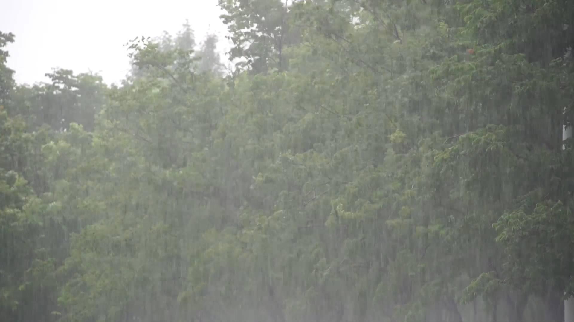 雷阵雨+9级大风+局地短时强降水!济南发布雷电黄色预警信号,注意防范