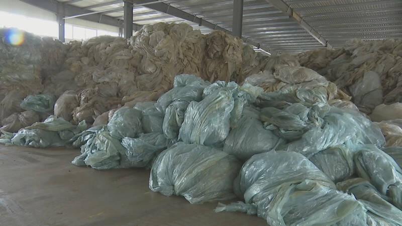 潍坊昌邑:做好废旧农膜回收利用 提升农业可持续发展能力