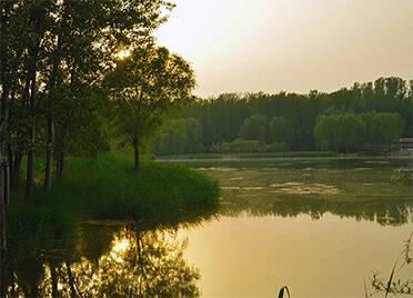 德州市德城区、齐河县入选全国第四批节水型社会建设达标县 总数达7个居全省首位
