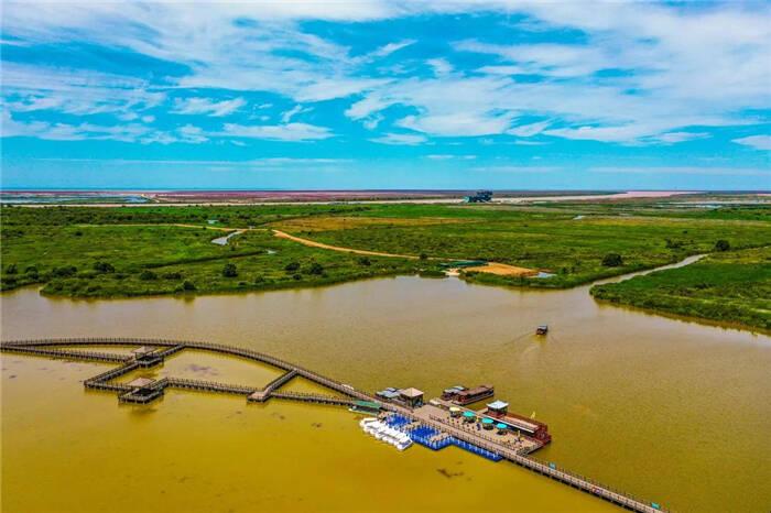 这个夏天,在黄河口体验震撼人心的河海交汇