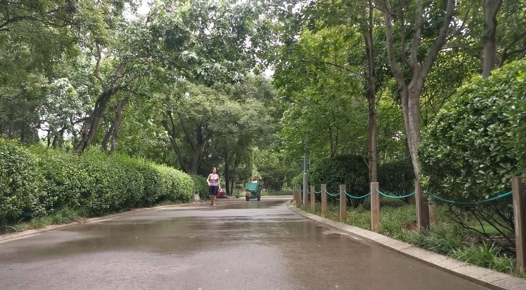 "Vlog丨台风""烟花""即将到达山东 济南今日中午下午出现短暂降雨"