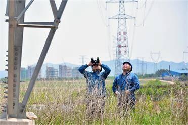"""聞""""風""""而動!威海810名搶修人員全天值守保供電"""