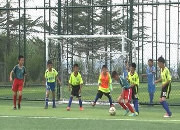 威海高新區:足球小將盡展綠茵豪情