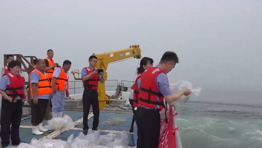 烟台莱州:生态修复赔偿直接用于海洋生态修复 3万余尾半滑舌鳎鱼放流莱州湾
