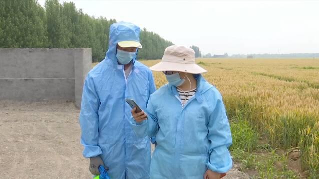 """""""公交站式""""收集、专人监管!潍坊这样做好农业面源污染源头治理"""