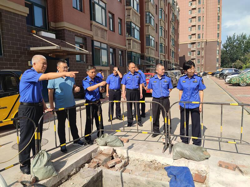 维护市容环境、园林绿化、市政设施改造提升 记潍坊市潍城区综合行政执法局工作人员的一上午