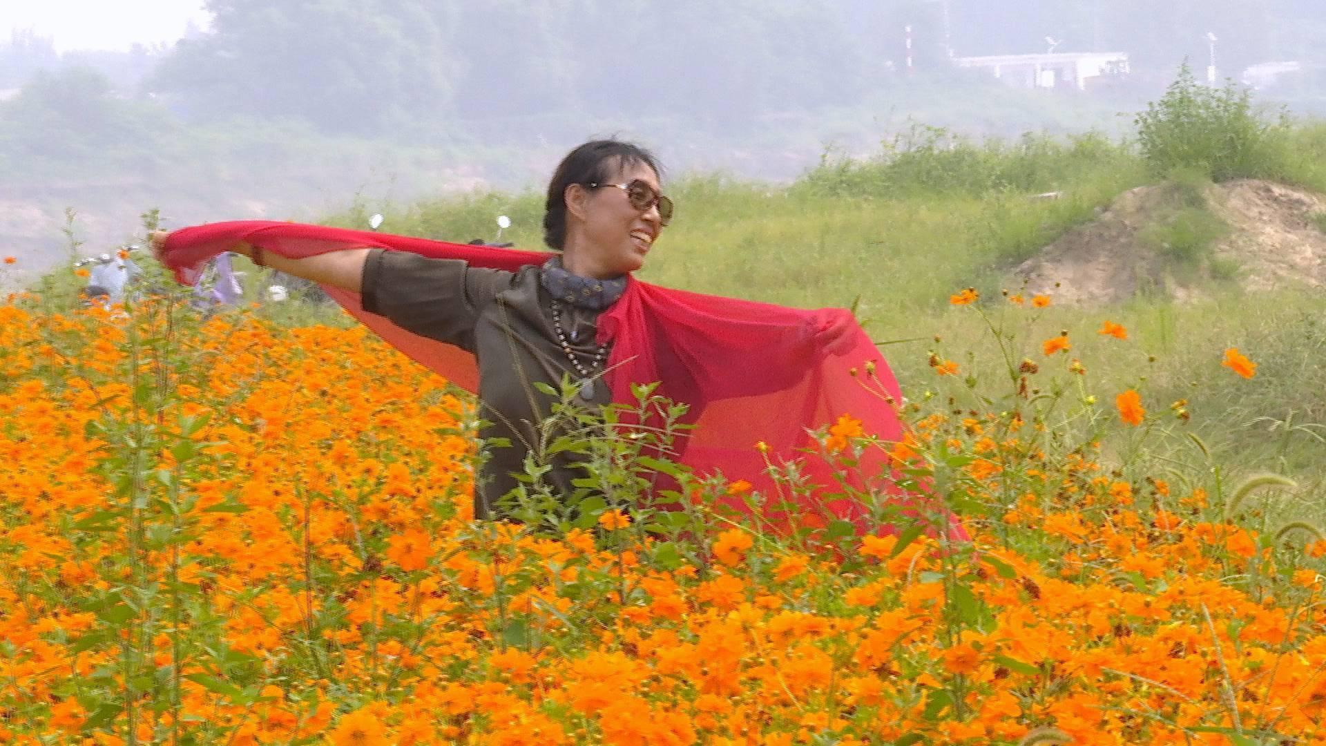 在济南,这场人与橙黄花海的比美可别错过!