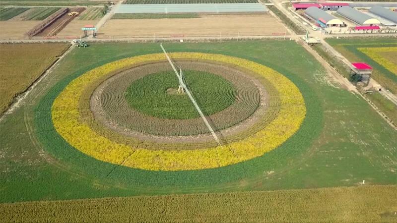 德州齐河县国家现代农业产业园建设全面启动 涵盖4个乡镇16万农民
