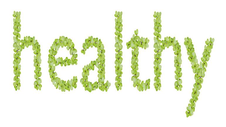 """健康是孩子""""中流擊水""""的底氣"""