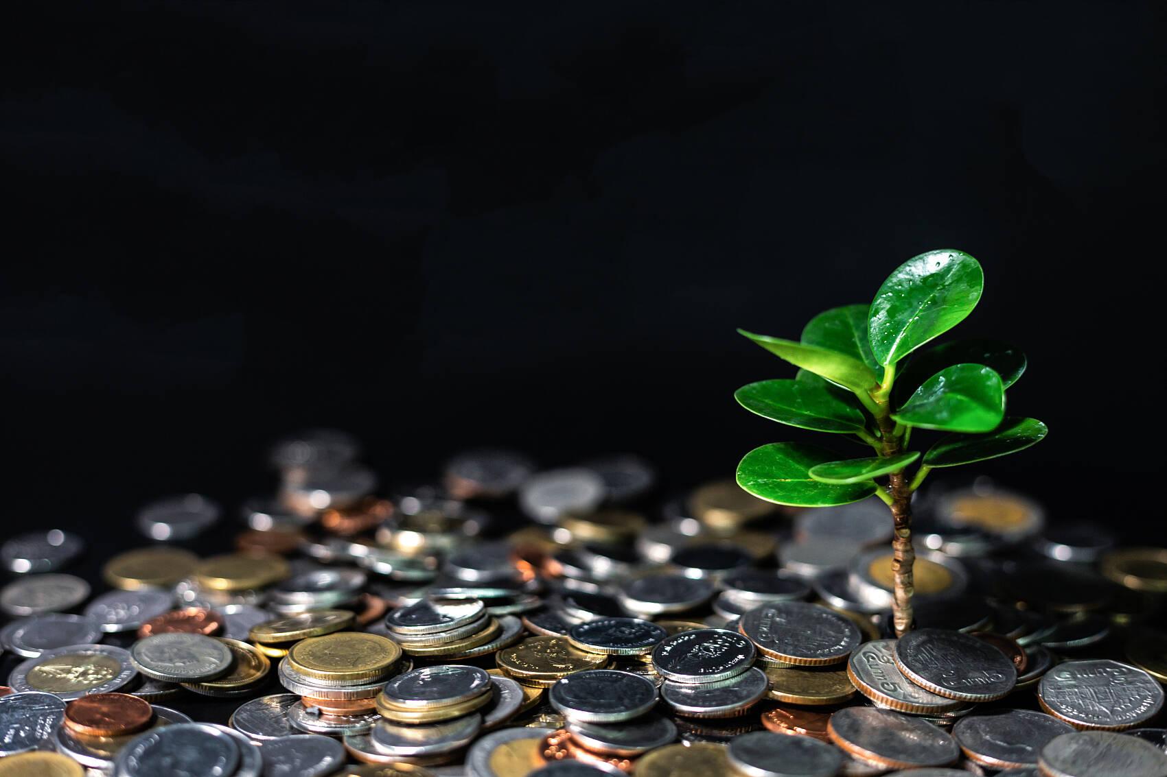 财看闪电丨山东全省农商银行155亿元资金助力绿色可持续发展