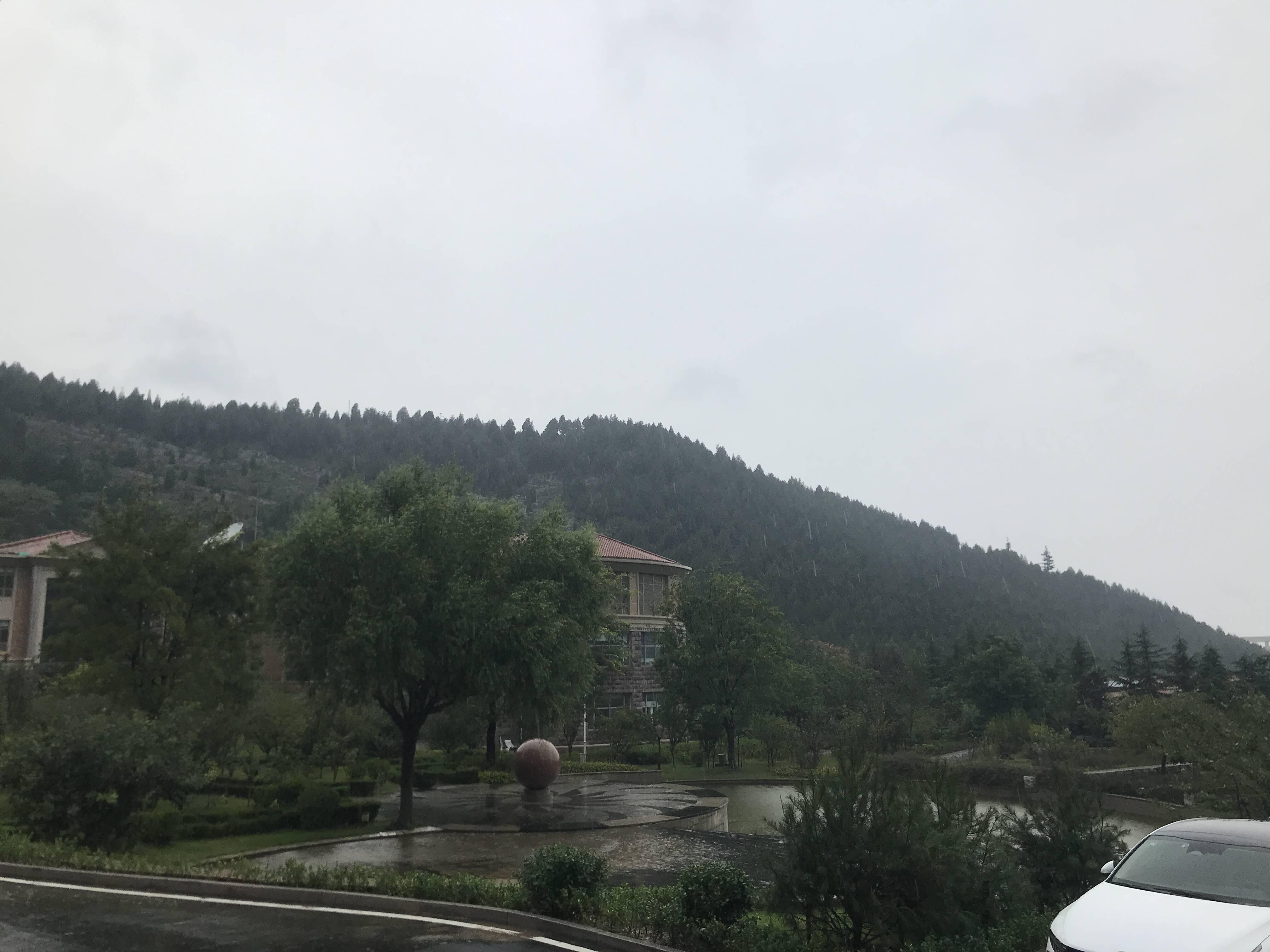 菏泽和聊城局部已降暴雨!今天到明天鲁西北和鲁中北部大到暴雨部分地区大暴雨