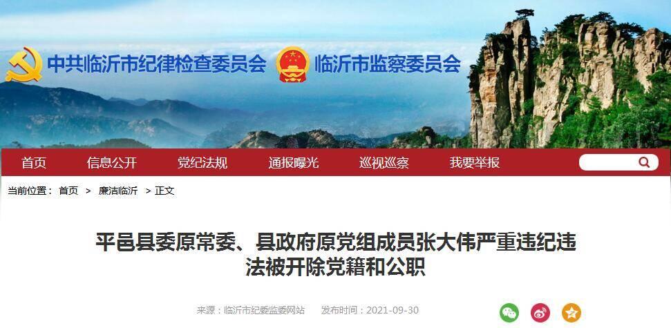 平邑县委原常委、县政府原党组成员张大伟严重违纪违法被开除党籍和公职