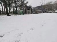 海丽气象吧∣山东发布暴雪黄色预警信号 10个市降雪将超6毫米
