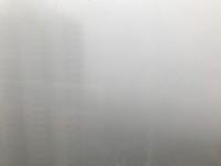 海丽气象吧丨山东这些地方年前将有大雾和小雨 除夕全省迎来大风天气