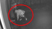 43秒丨滨州博兴一男子雨夜竟然干这事 监控拍下全过程