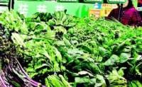 2月13日日照居民消费品市场运行平稳 价格持续回落