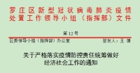 临沂市罗庄区强化疫情防控责任 为企业复工复产保驾护航