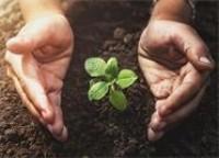 共计129.3万!威海高新区为品牌企业和标准化项目发放奖励资金