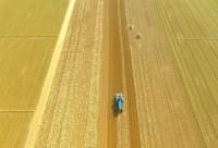 闪电评论丨抢抓农时拥抱春天 希望的种子正在发芽