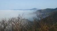 58秒 | 云雾飘渺宛如仙境!济南九如山景区雨后现平流雾奇观