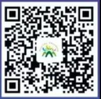 山东健康码已和16省市互认!附申请及使用指南
