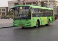 3月25日起 济宁临时调整5路、11路公交线路