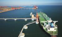 净利同比增长5.5% 青岛港发布2019年度业绩